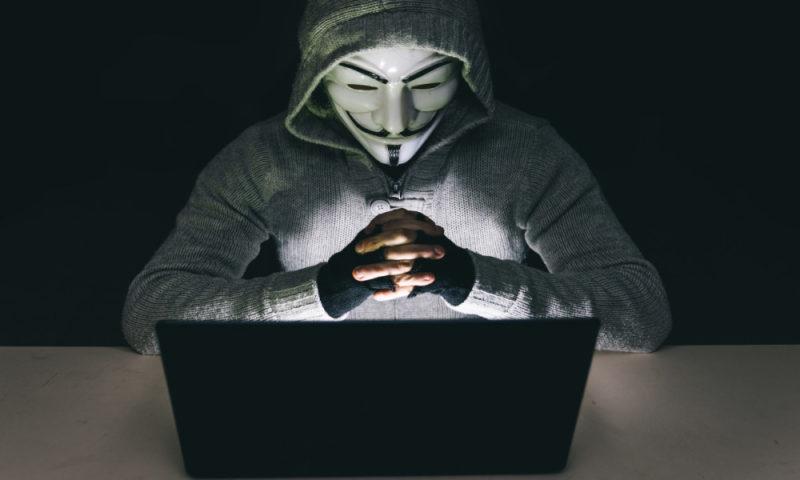 Internet és jog szekció